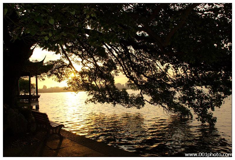 晨光平湖秋月