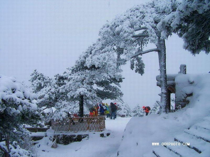黄山冬游 黄山雪景 黄山下雪图片